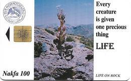 @+ Erythrée à Puce - LIFE - Cactus - Ref : ER-ERI-0006 - Erythrée