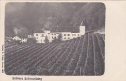 4811222Schloss Schwanburg. (Verlag B. Peter, Meran 1904.) - Bolzano (Bozen)