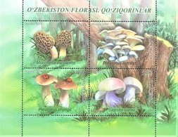 UZBEKISTAN  2019   Mushrooms Of Uzbekistan   S/S   MNH - Ouzbékistan