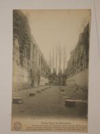 Mariemont : Ruines - Morlanwelz