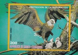 Guinea Equatoriale 1976 Bf. 251B Birds Bald Eagle Aquila Di Mare Testabianca Sheet Imperf. CTO - Aquile & Rapaci Diurni