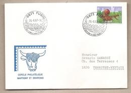 Svizzera - Busta Viaggiata - 1987 - Storia Postale
