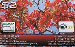 MARSHALL  -  Prepaid  -  Tree  -$2 - Marshall Islands