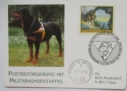 Österreich Militär Hunde, Militärhundestaffel 1992 (72737)  - Dogs
