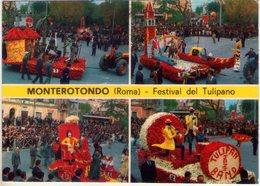 Monterotondo (Roma). Multivisione Del Festival Del Tulipano. VG. - Fiori