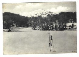 3040 - CASTELBUONO PALERMO CAMPO DI SCI PIANO IMPERIALE PRO LOCO 1960 - Altre Città