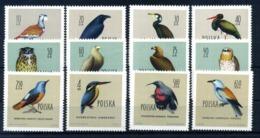 1960 POLONIA SET MNH ** 1070/1081 Uccelli Diversi - 1944-.... Repubblica