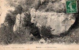 Dép. 41 - BOURRE - Circulé - La Cave Aux LOUPS  - - Frankreich
