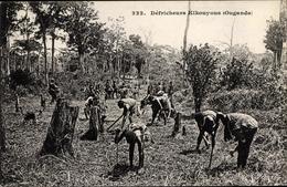 Cp Uganda, Défricheurs Kikouyous - Costumi