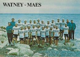 CARTE CYCLISME GROUPE TEAM WARNEYS MAES 1973 FORMAT 15 X 21 - Cyclisme