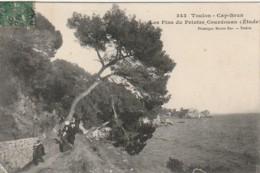 KO 23-(83) TOULON CAP BRUN - LES PINS DU PEINTRE COURDOUAN - 2 SCANS - Toulon