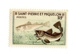 Saint Pierre Et Miquelon  1957 PM 354 Cod Gadus Morrhua  Animaux Faune | Poissons | Vie Marine - Unused Stamps