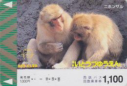 Carte Prépayée Japon - ANIMAL - SINGE MACAQUE  - MONKEY Japan Prepaid Bus Card - AFFE -  Nishi 338 - Telefonkarten