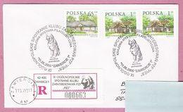 Poland 2000, Zawiercie , R. Letter, Dog, Dogs , Chien, Hund,  Chiens, Perros - Chiens