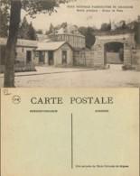 D - [511344]B/TB//-France  - (78) Yvelines, Ecole Nationale D'Agriculture De Grignon,Poste & Facteurs - Grignon