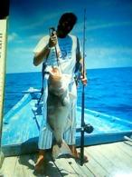 MALDIVE ISLAND ATHURUGA THUDUFUSHI  ARI ATOLL PESCA FISH  VB1995 HK4625 - Maldive