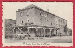 Falaën - Grand Hôtel, Café De La Molignée ... Bières ADS, Trappiste, Chimay ( Voir Verso ) - Onhaye