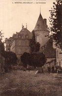 Dept 63,Puy De Dôme,Cpa Montel De Gelat,Le Château - Autres Communes