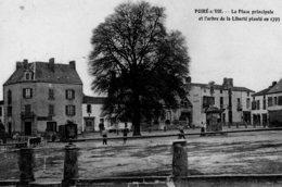 Le Poiré Sur Vie : La Place Principale Et L'arbre De La Liberté Plante En 1793 - Poiré-sur-Vie