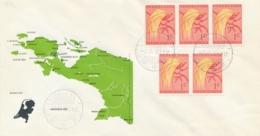 Nederlands Nieuw Guinea - 1961 - LB STEENKOOL Op Special Cover Met Landkaart Van NNG - No Address - Nouvelle Guinée Néerlandaise