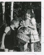 Photographie A Identifiée . Enfants Avec  Un Panier Rempli De Champignons - Orte