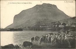 61007581 Grenoble Bords De L'Isere Casque De Neron Mouton / Grenoble /Arrond. De - Francia