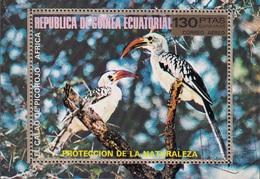 Guinea Equatoriale 1976 Bf. 246AA Birds Tockus Erythrorhynchus Bucero Beccorosso Sheet Perf. CTO - Altri