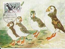 N° 1274 MACAREUX - CACHET PROTECTION DE LA NATURE - PREMIER JOUR DU 12/11/60 - Oiseaux