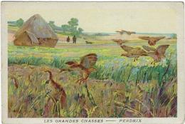 Image Les Grandes Chasses Perdrix - Animales