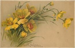 TOP 64 - CPA Original  Fleurs -  Signée  Catharina KLEIN - BE,  Voir Scan Recto Verso - Klein, Catharina