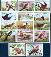 Editions éducatives. Images Didactiques, Bons-points Récompenses Scolaires. 14 Images, Oiseaux Divers. - Chromos
