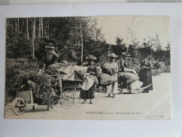 CPA De NOIRETABLE ;   - Les Ramasseuses De Bois - - Noiretable