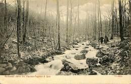 CPA - Belgique - Spa - Ruisseau Dans Les Hautes-Fagnes - Spa