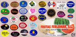 Etiquettes De Fruits °_ Toutes Différentes Sur Papier Siliconé-feuillet N° 28 - Fruits Et Légumes