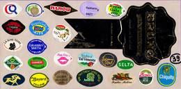 Etiquettes De Fruits °_ Toutes Différentes Sur Papier Siliconé-feuillet N° 39 - Frutas Y Legumbres