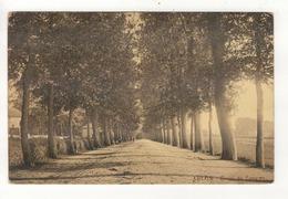 ARLON - Route De Longwy. - Arlon