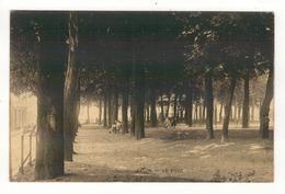 ARLON - Le Parc. - Arlon