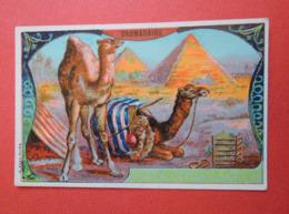 Chromo Joli Décor. Thème EGYPTE. Dromadaire Devant Les Pyramides. - Vieux Papiers