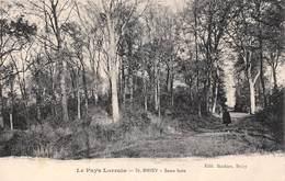 (54) Briey - Sous Bois - Briey