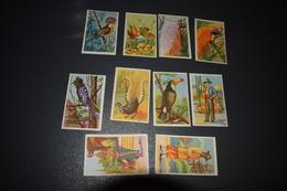 Chocolat Aiglon 10 Oiseaux Costumes Nationaux N° 372 - 373 - 375 - 378 - 381 - 382 - 384 - 385 - 388 - 391 - Aiglon
