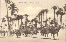 """1911/12-""""Guerra Italo-Turca,Tripoli Italiana Strada Lanzur""""assolutamente Perfetta - Altre Guerre"""