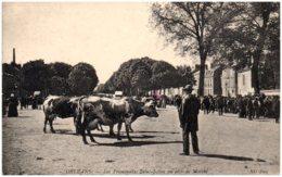 45 ORLEANS - Les Promenades Saint-Julien Un Jour De Marché - Orleans