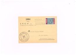 Carte Postale De Vielsalm à Saint-Servais. - België