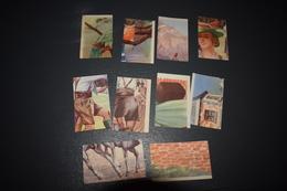 Chocolat Aiglon 10 Oiseaux Costumes Nationaux La Poste N° 641 - 655 - 664 - 672 - 673 - 675 - 705 - 711 - 715 - 714 - Aiglon