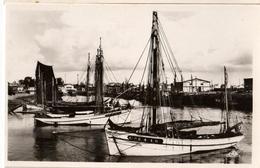 56 - LORIENT - LE PORT DE PÊCHE - Lorient