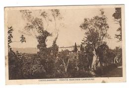 3137 - CASTELMASSIMO VEROLI FROSINONE TENUTA MARCHESI CAMPANARI 1920 CIRCA - Other Cities