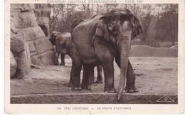 ELEPHANT(EXPOSITION COLONIALE PARIS 1931) - Elephants
