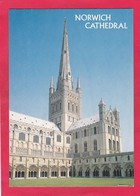 Modern Post Card Of Norwich Cathedral,Norwich,Norfolk,England,P28. - Norwich