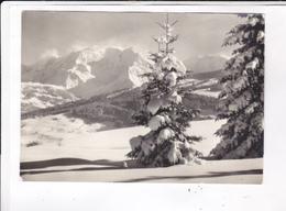 CPM DPT 74 LES ALPES, L CHAINE DU MONT BLANC VUE PAR R. BOURDEAU - Chamonix-Mont-Blanc