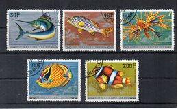 ISOLE COMORES - 1977 - Lotto 5 Francobolli Tematica Pesci - Usati - (FDC19740) - Isole Comore (1975-...)